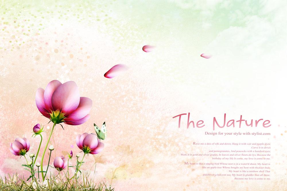 红花 花瓣实用背景PSD素材