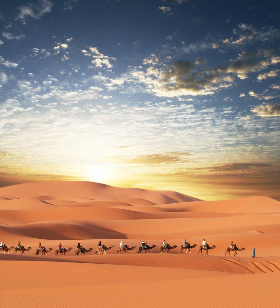 沙漠骆驼队伍图片素材