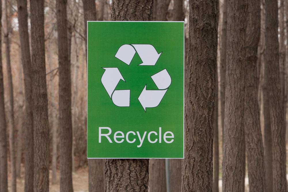 树上挂着的的环保标志高清图片