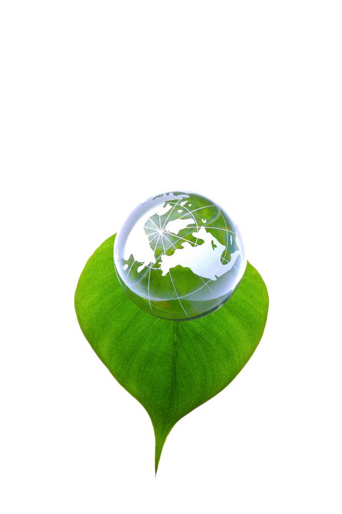 绿叶与科技地球环保图片