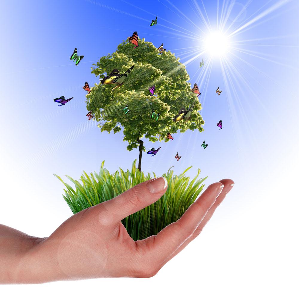 绿色环保主题高清图片
