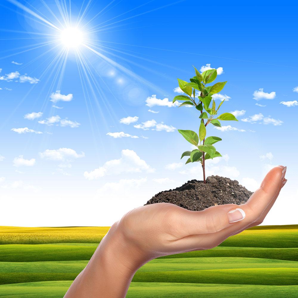 绿色环保创意高清图片