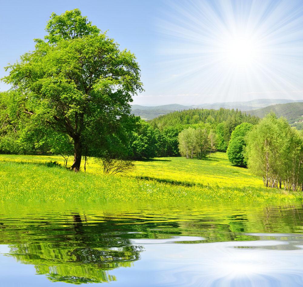 春天自然风景图片