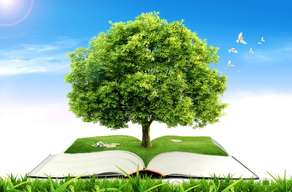 宣传绿色环保图片