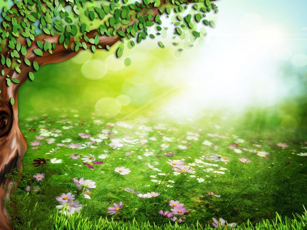 春天树木鲜花草地背景